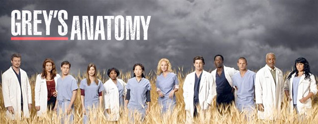 Grey's Anatomy – 8.09 Dark was the night