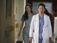 Greys Anatomy 8x17 4 Greys Antomy   8.17 One Step To Far