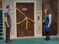 the big bang theory_905_d